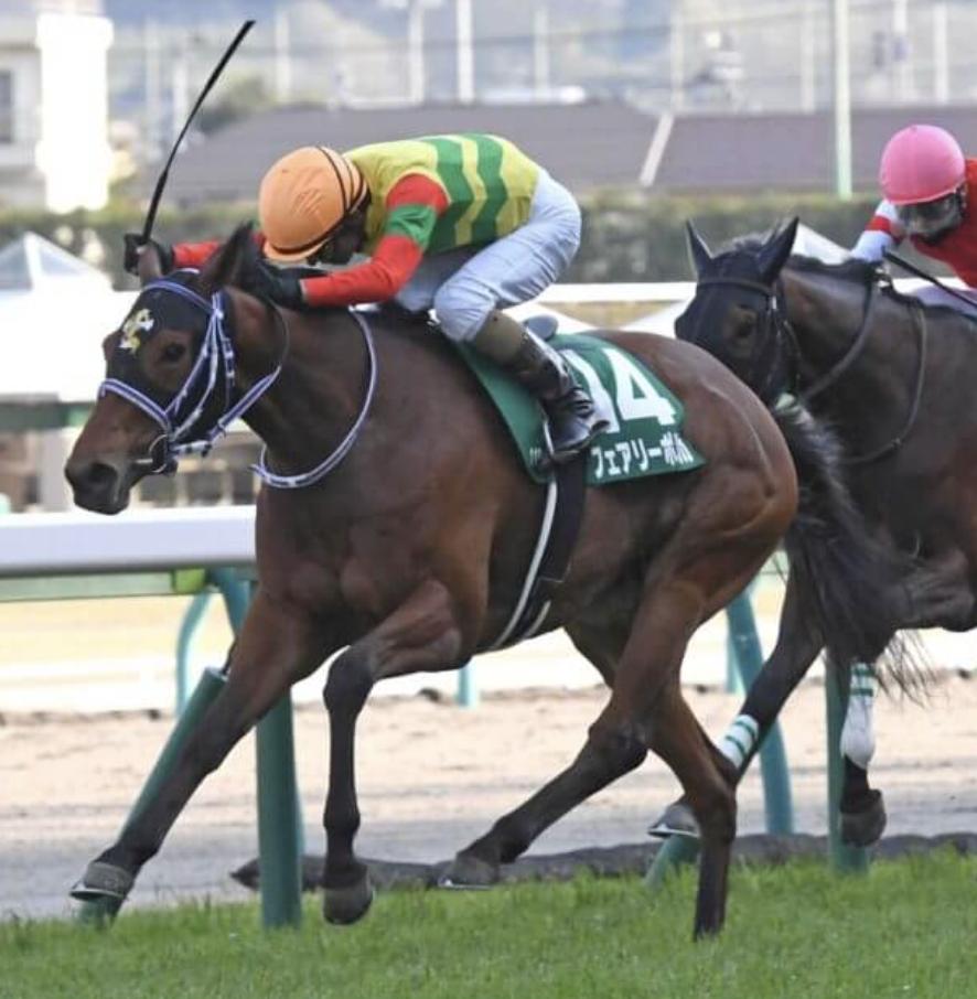 福島牝馬ステークス2021アイキャッチ